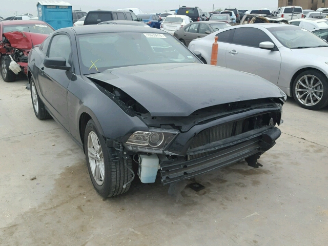 1ZVBP8AM5D5281786 - 2013 FORD MUSTANG