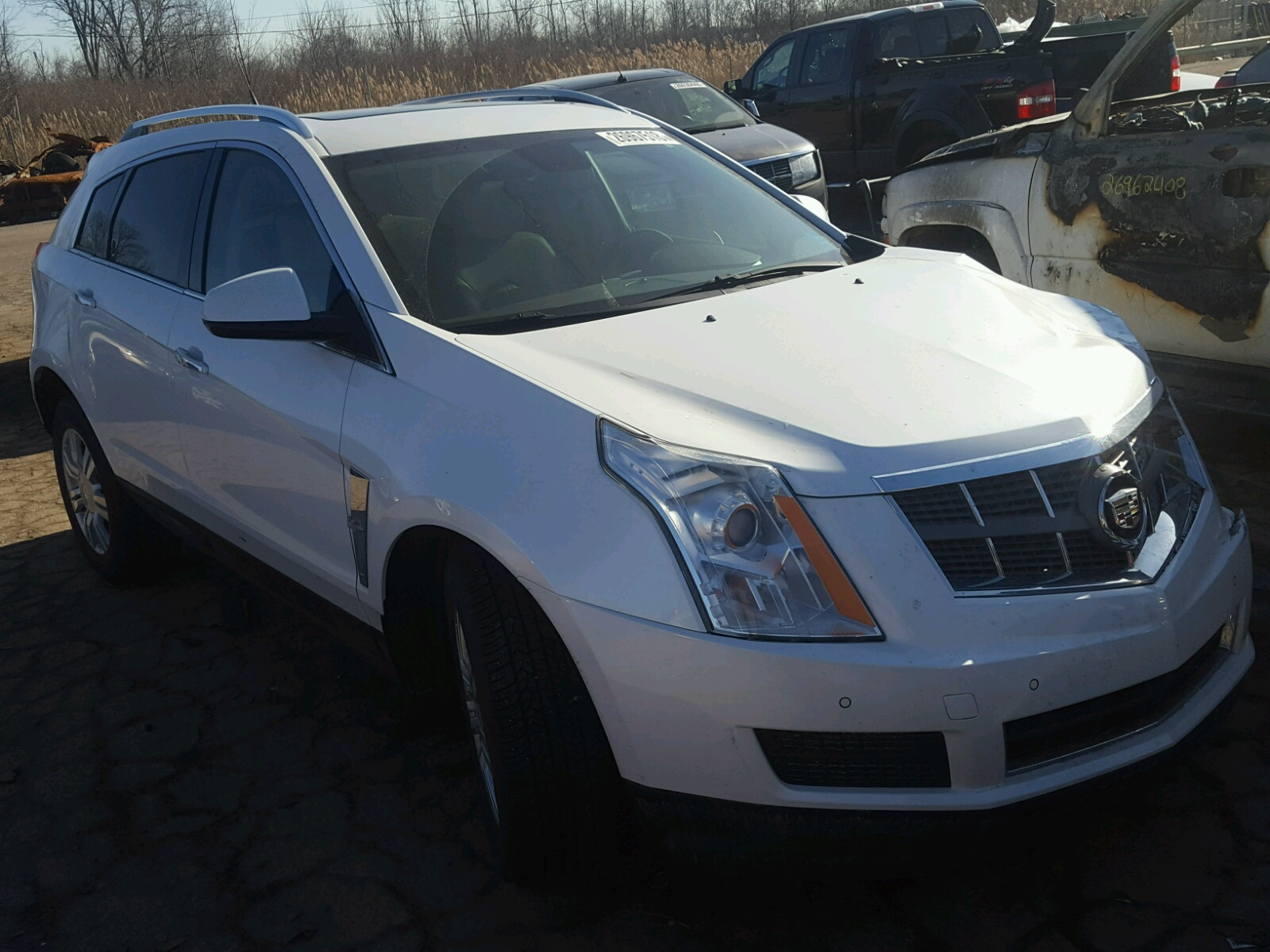 and used cadillac cas reshoot collection luxury srx bear john en hamilton performance at vehicle stock inventory