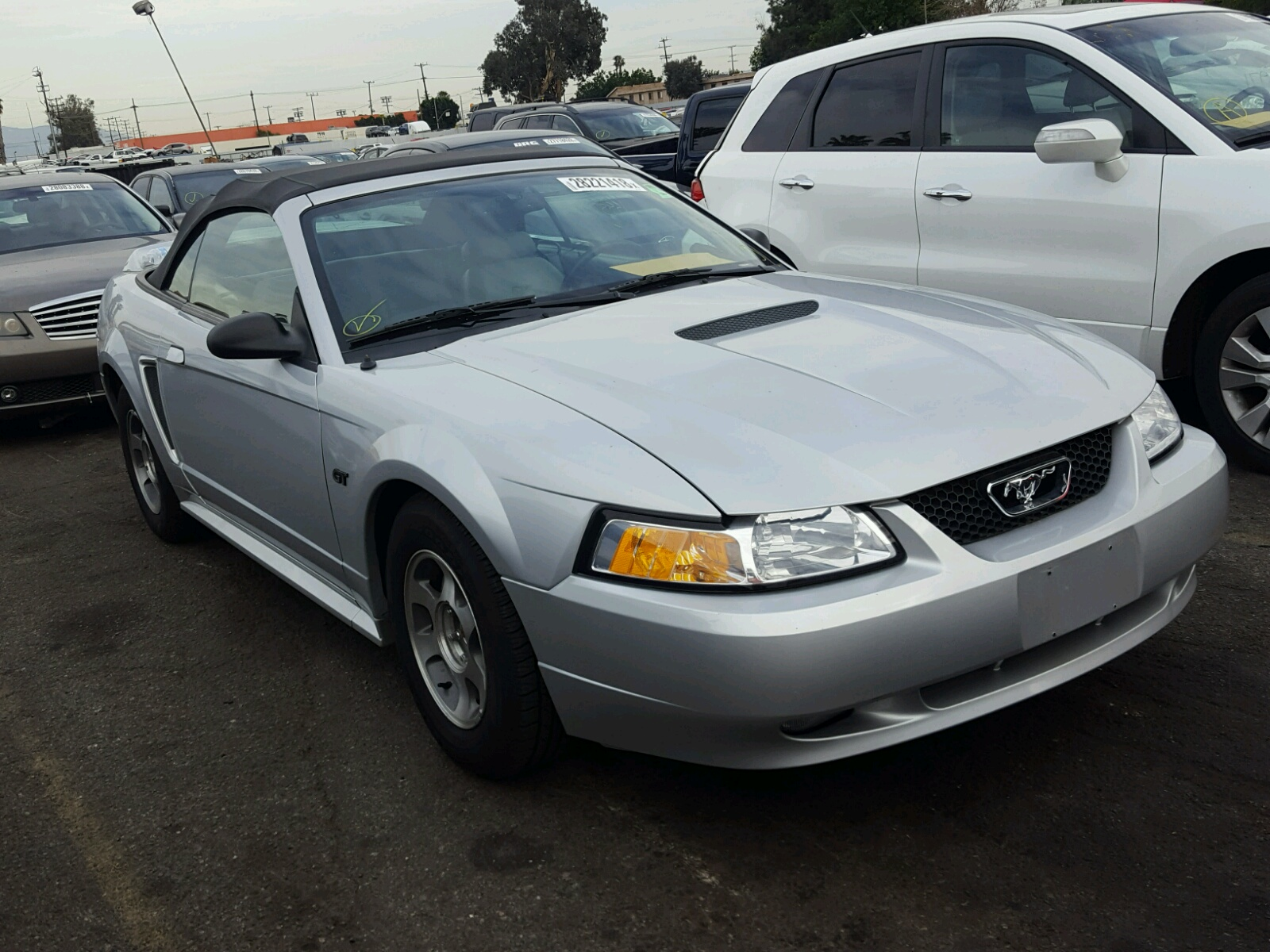 2000 Ford Mustang Gt 4 6l Left View