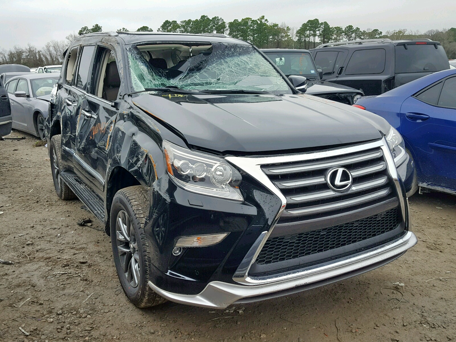 2019 Lexus Gx 460 4.6L 8 in TX - Houston ...