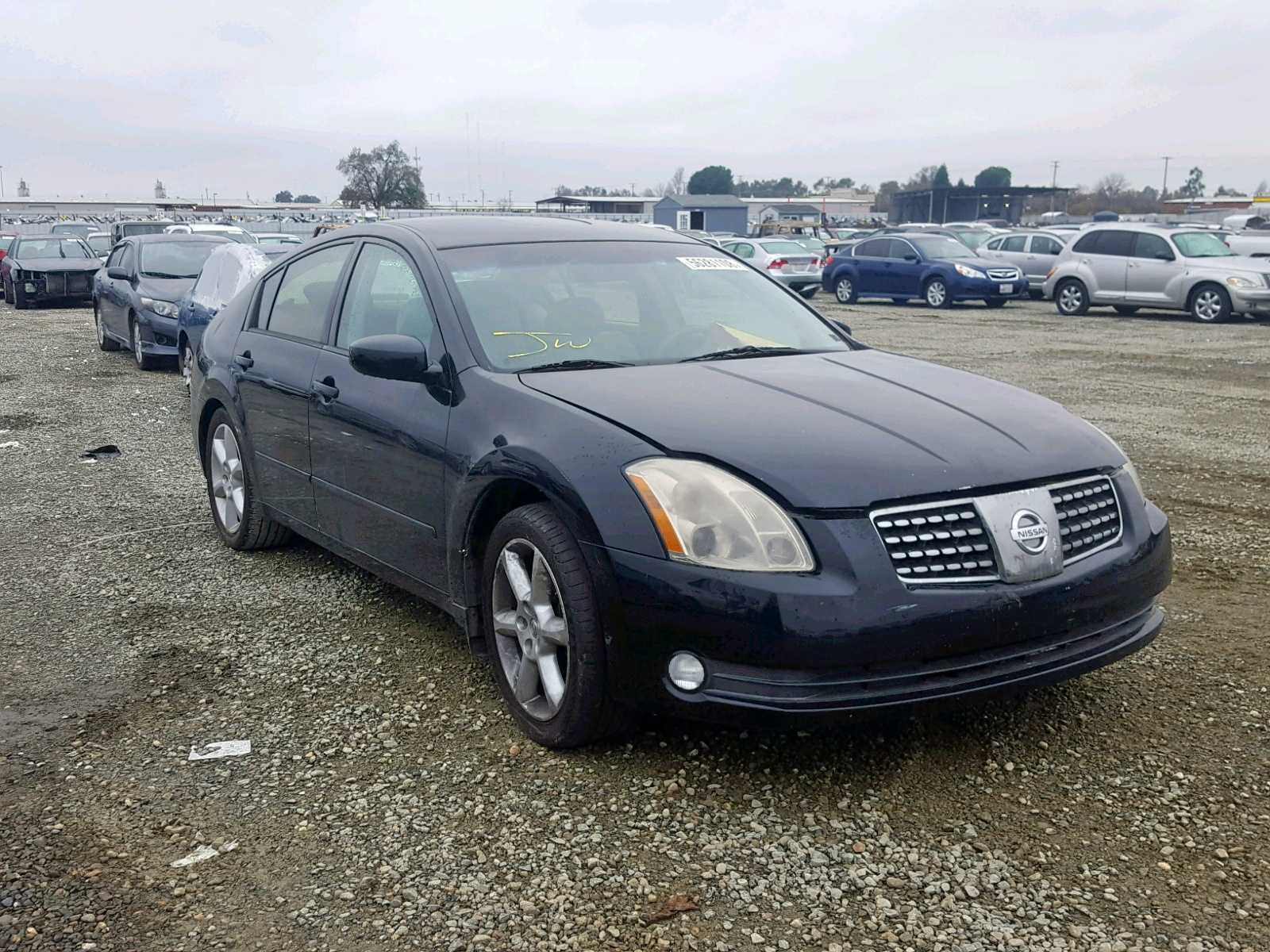 Salvage 2006 Nissan MAXIMA SE for sale