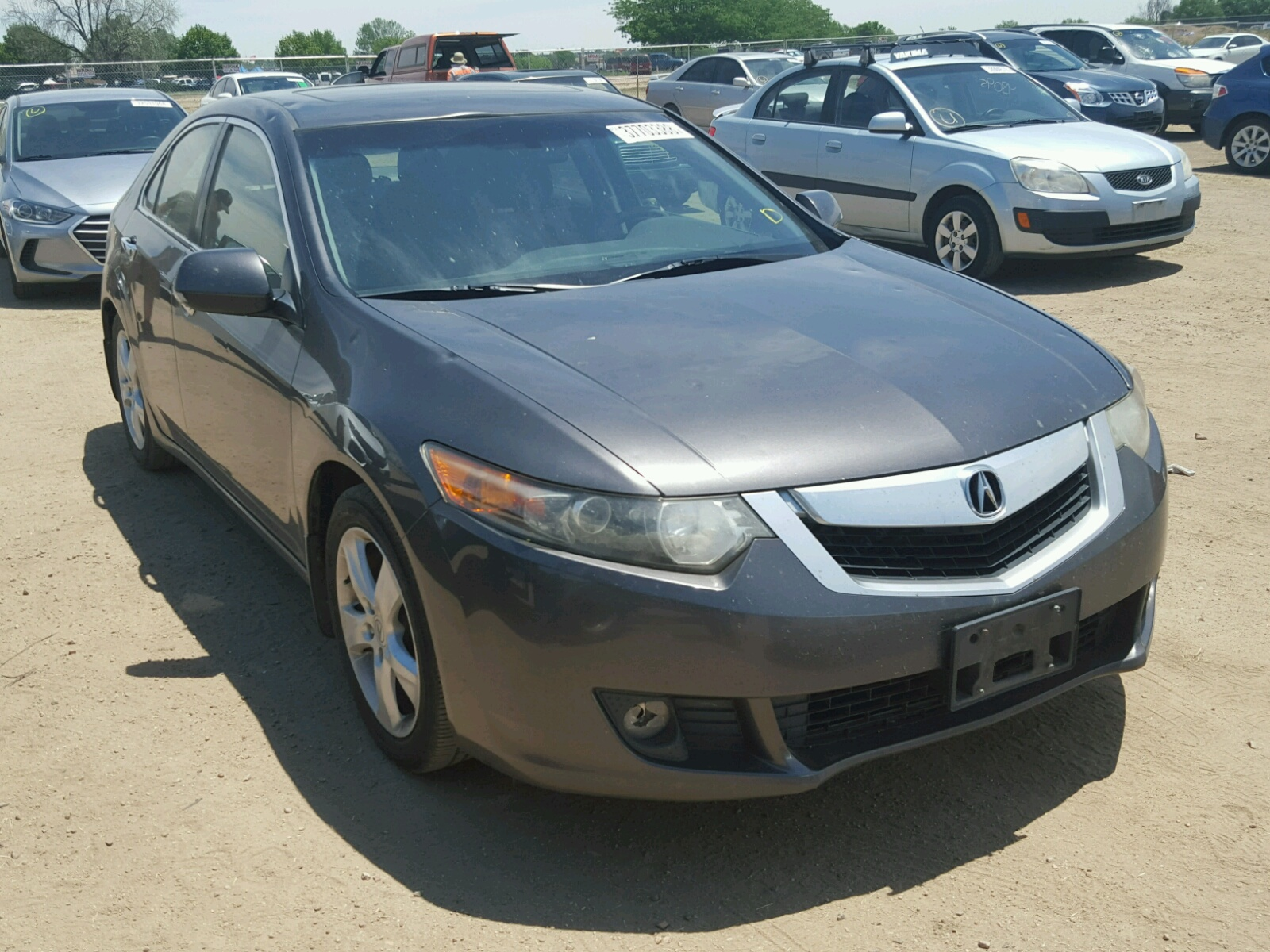Salvage 2010 Acura TSX for sale