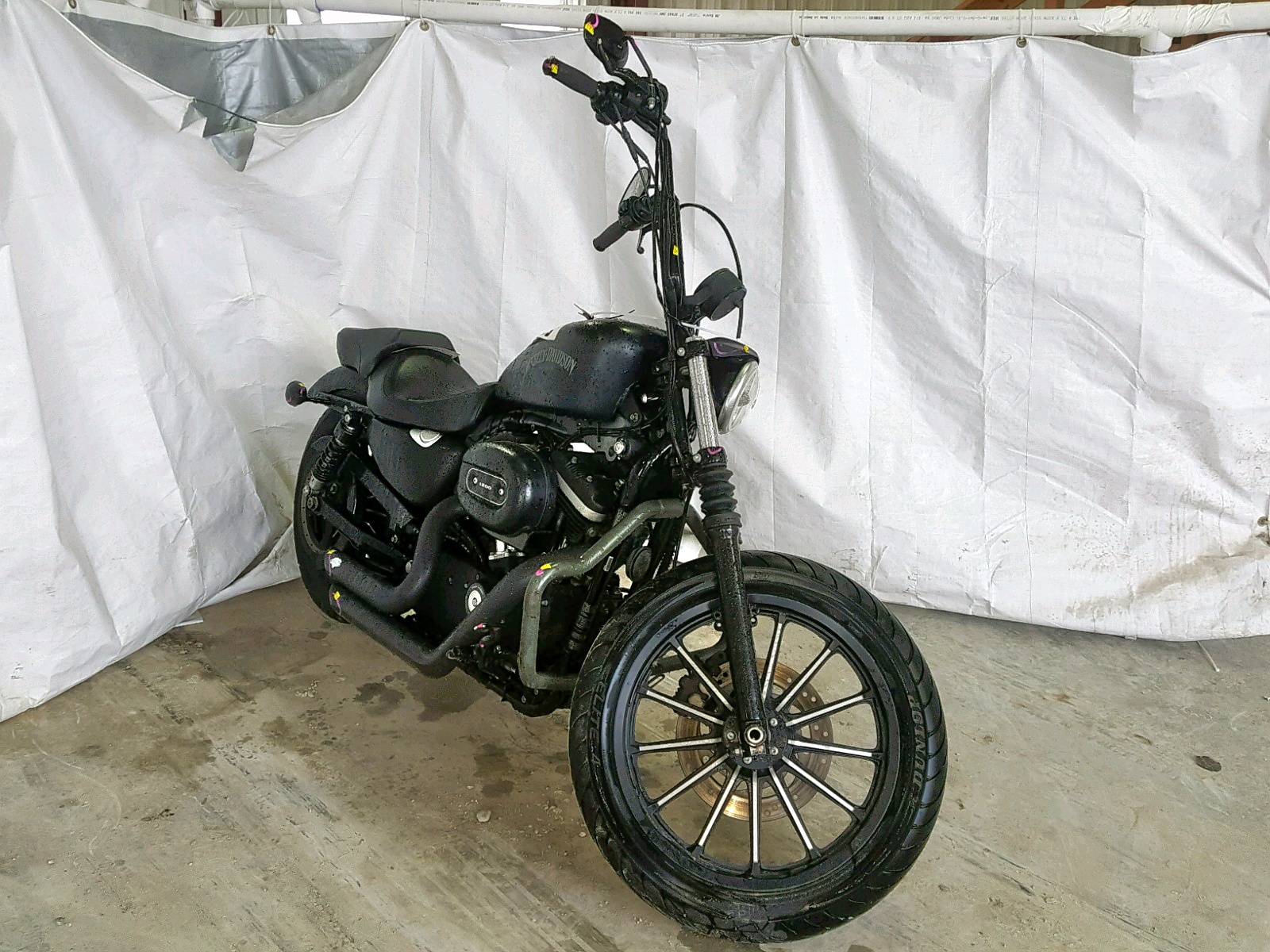 Salvage 2013 Harley-Davidson XL883 IRON for sale