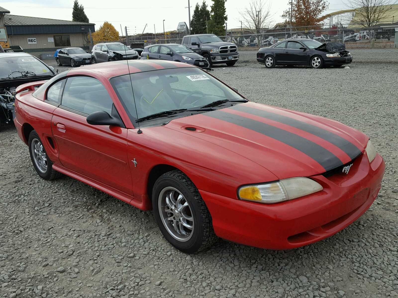 Salvage 1996 Ford MUSTANG for sale