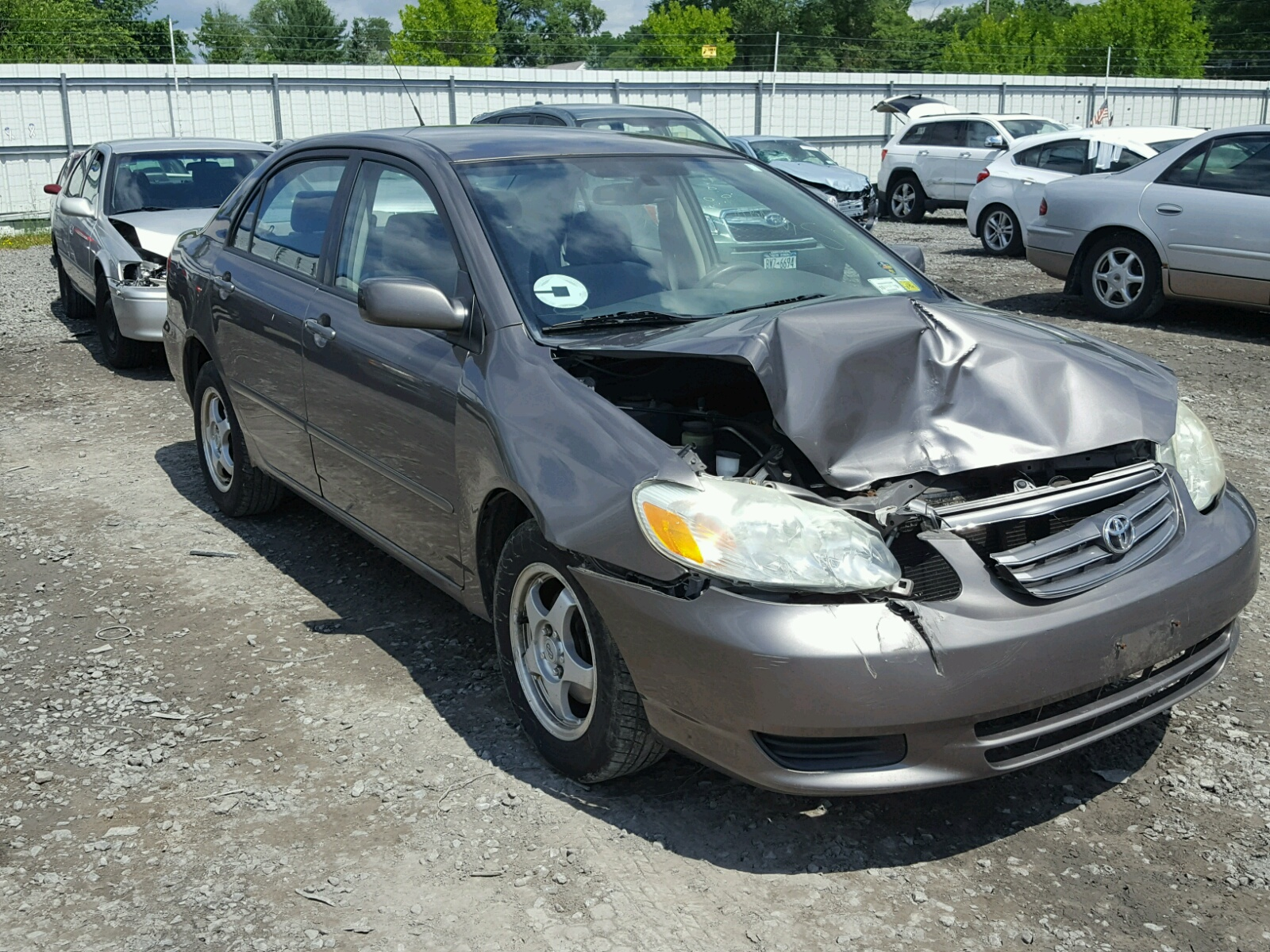 2003 Toyota Corolla CE for sale at Copart Albany NY Lot