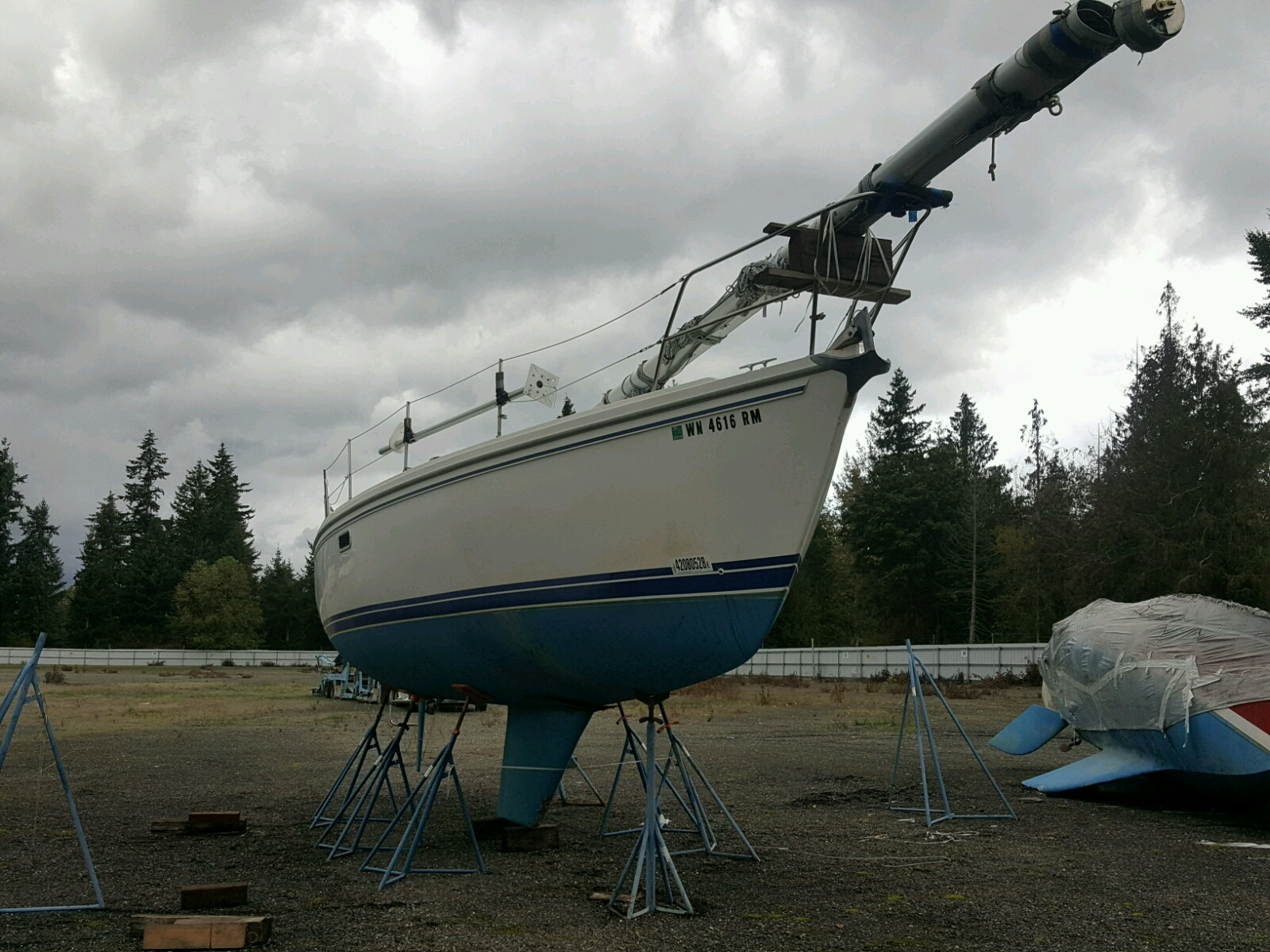 Salvage 1993 Catalina MARINE LOT for sale