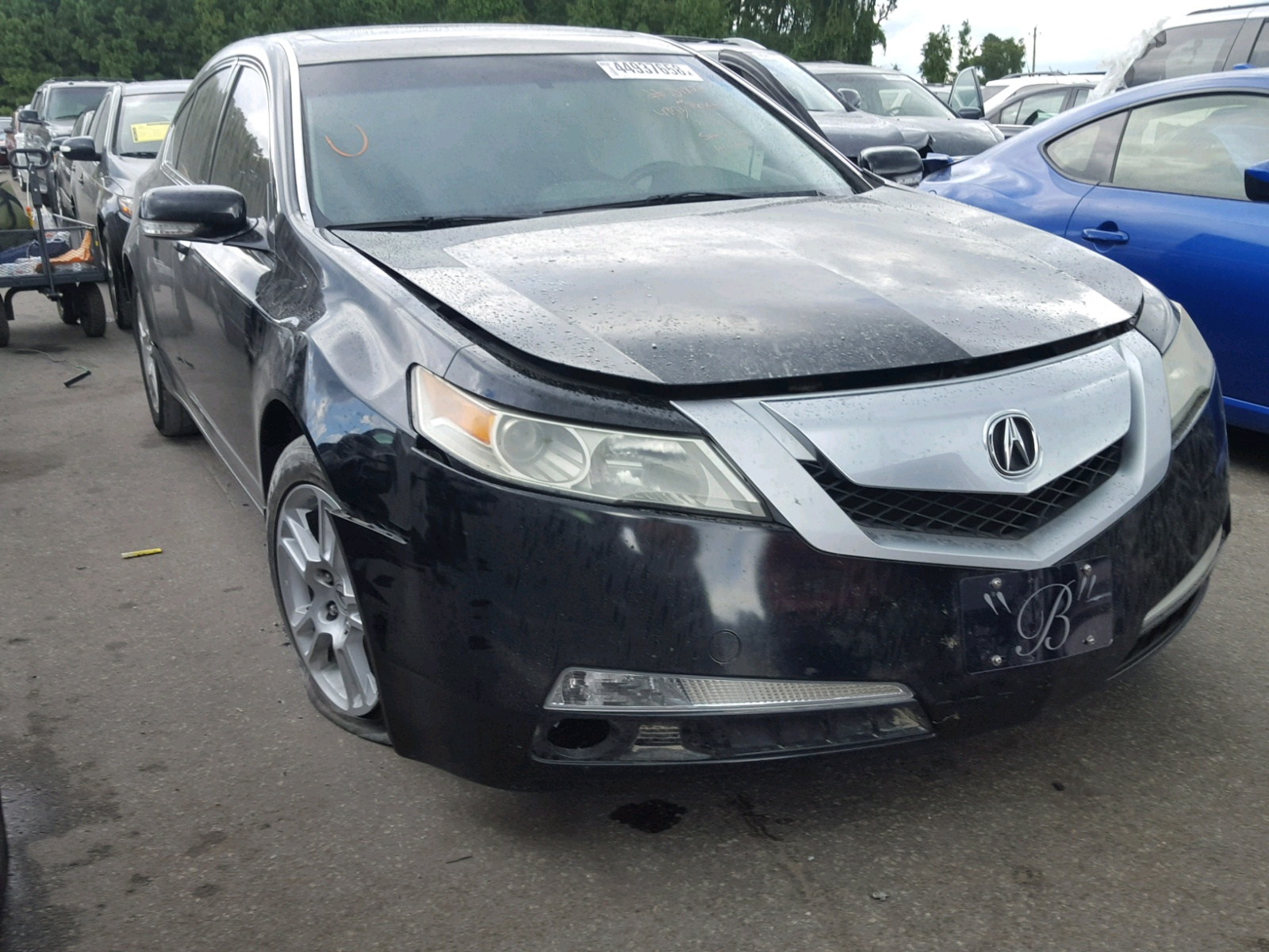 Salvage 2009 Acura TL for sale