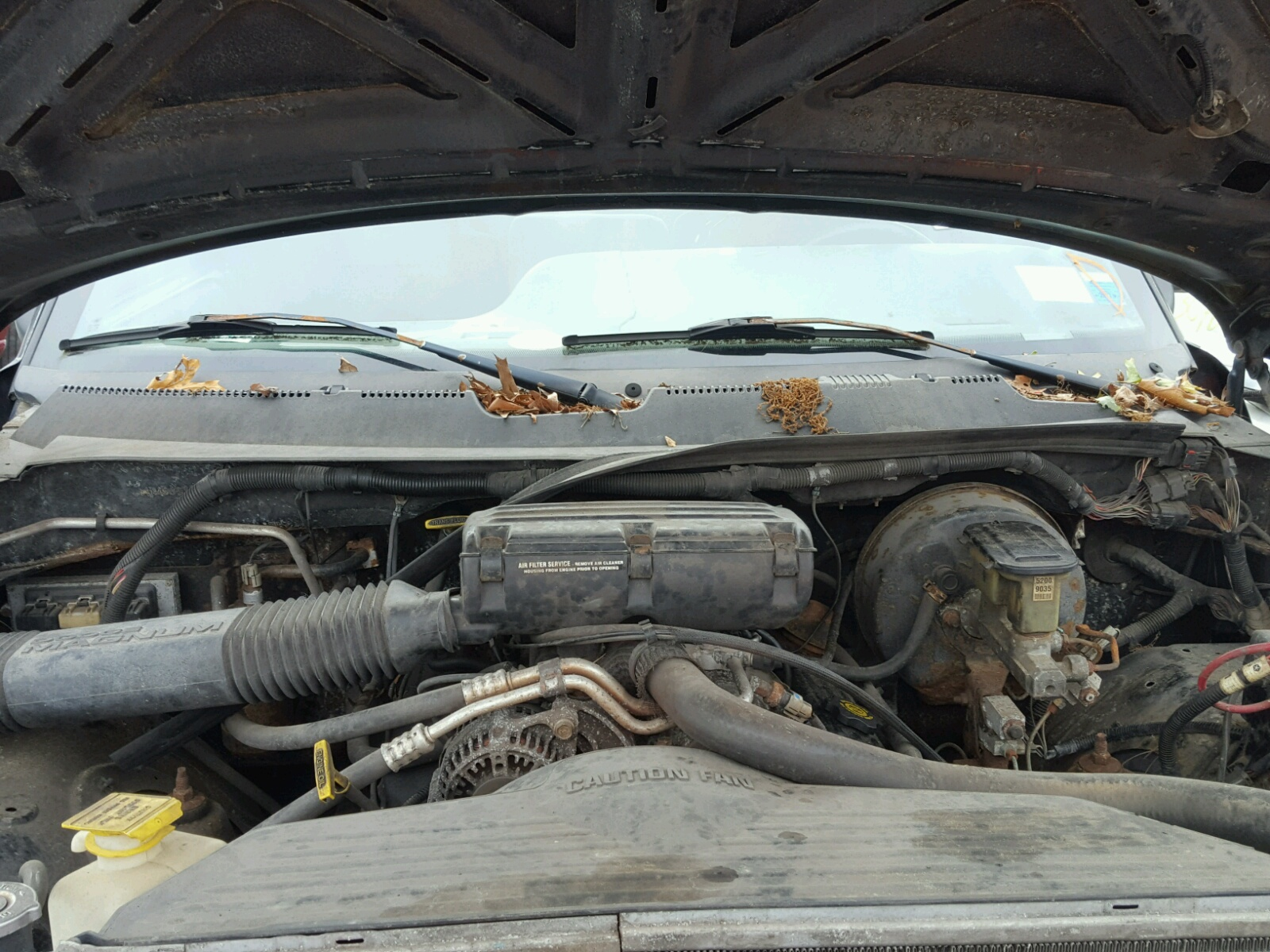 3b7hf13z8vm599283 1997 Black Dodge Ram 1500 On Sale In Ny Long Fuel Filter Location 59l Inside View