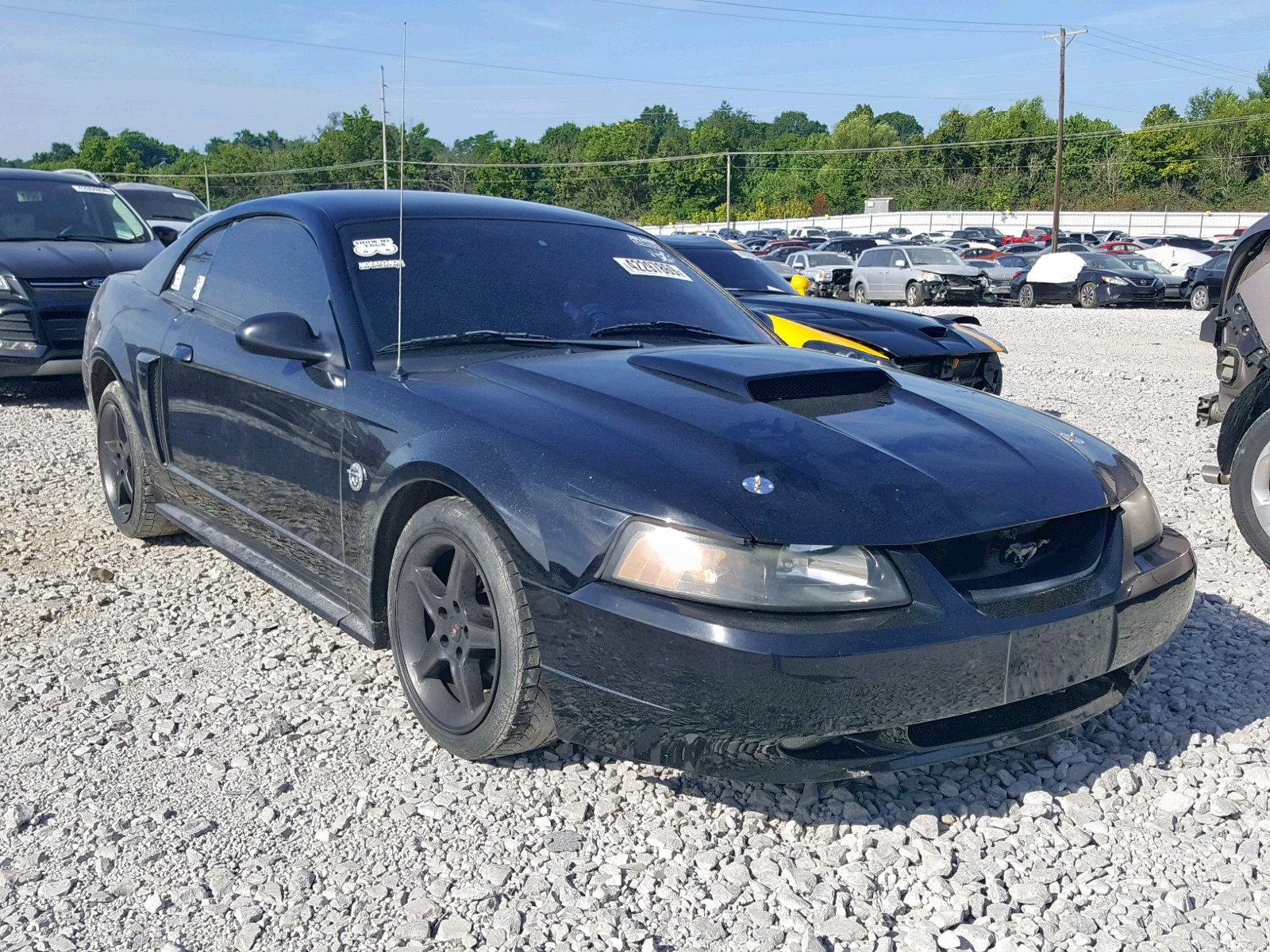 2004 ford mustang gt 4 6l 8 in ky lexington west