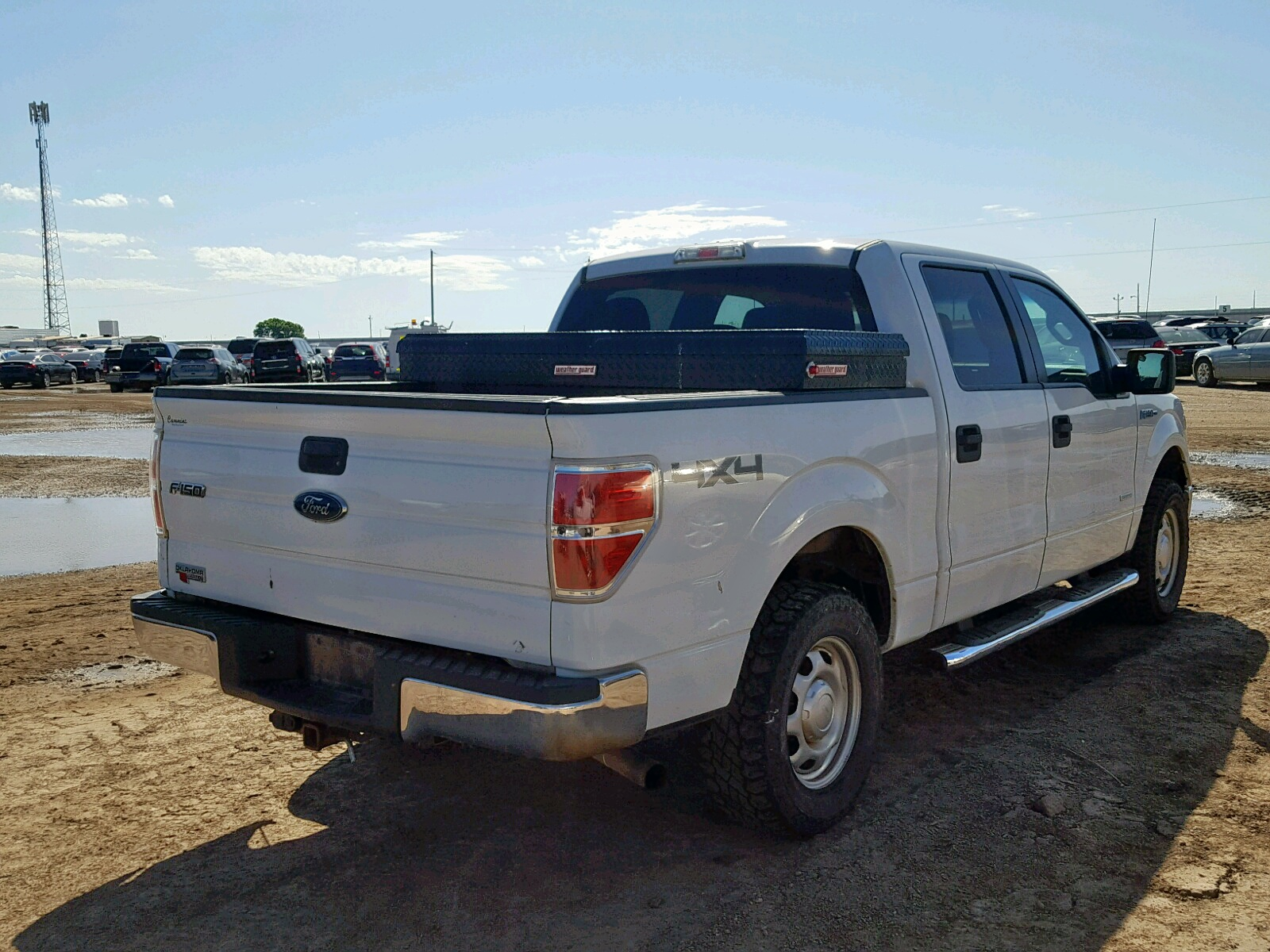 1FTFW1ET8CFC76784 - 2012 Ford F150 Super 3.5L rear view