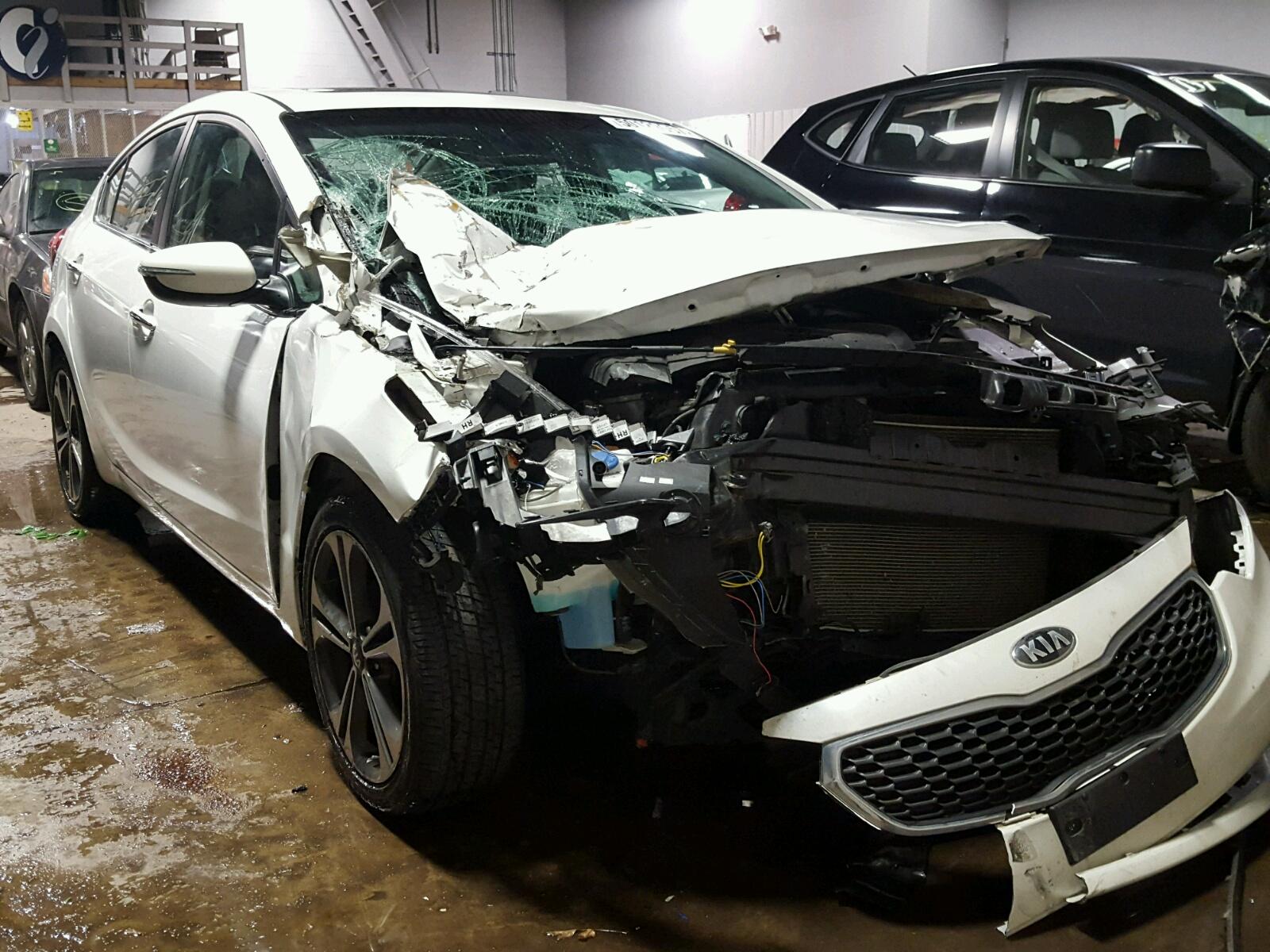 Auto Auction Ended On Vin Knafz4a82e5061336 2014 Kia Forte Ex In Mn Cerato 2013 Under Hood Minneapolis North