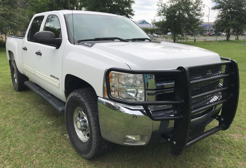 Salvage cars for sale from Copart Ocala, FL: 2010 Chevrolet Silverado
