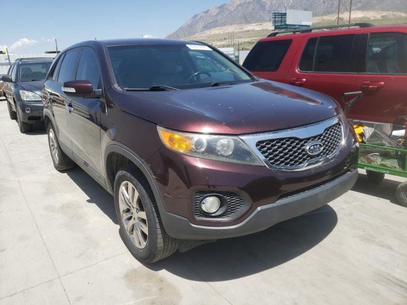 Salvage cars for sale from Copart Farr West, UT: 2011 KIA Sorento EX