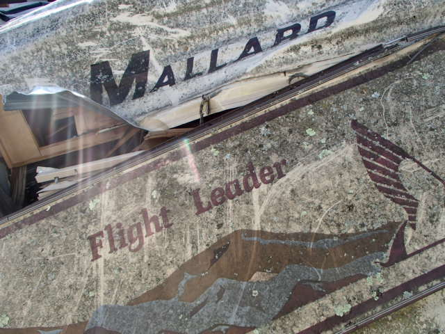1989 MALL FLIGHTLEAD
