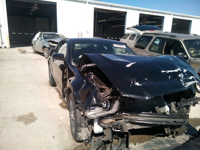 1ZVBP8AM0D5257475 - 2013 FORD MUSTANG