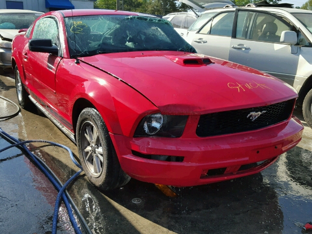 1ZVFT80N155156891 - 2005 FORD MUSTANG