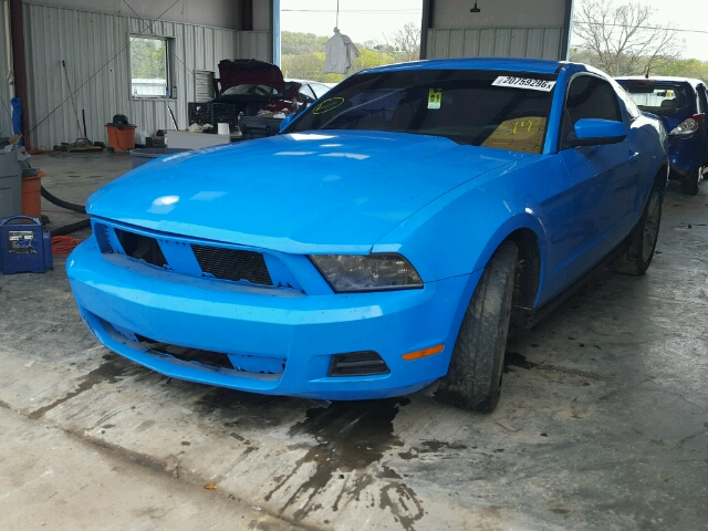 1ZVBP8ANXA5131662 - 2010 FORD MUSTANG 4.0L Right View