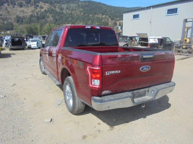 1FTEW1EP3FFB27024 - 2015 FORD F150