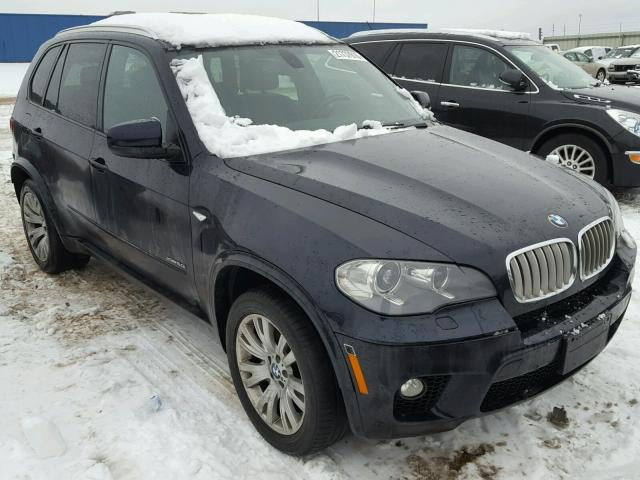 2012 bmw x5 xdrive50i for sale mi detroit salvage cars copart usa. Black Bedroom Furniture Sets. Home Design Ideas
