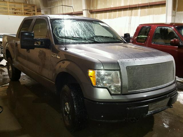 1FTEW1E81AFB20977-2010-ford-f150