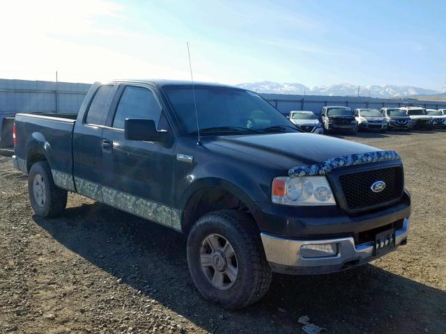 1FTPX14574NA02861-2004-ford-f150