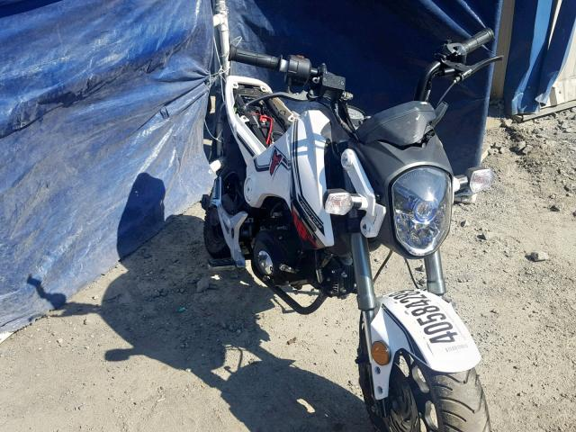 click here to view 2018 OTHER MINIBIKE at IBIDSAFELY