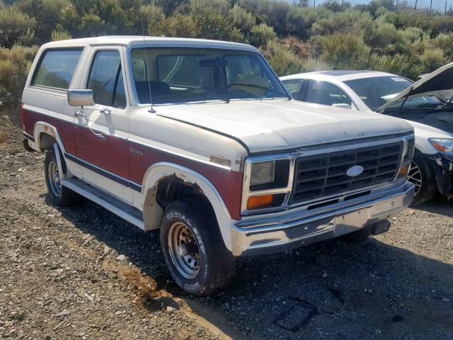 1983 FORD  BRONCO U10