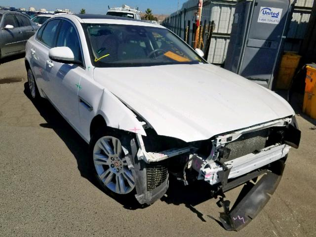 click here to view 2016 JAGUAR XF PREMIUM at IBIDSAFELY