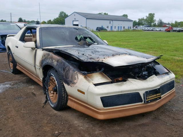 Download 1984 Pontiac Firebird For Sale