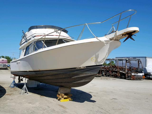 click here to view 1987 BLKF SPORT FISH at IBIDSAFELY