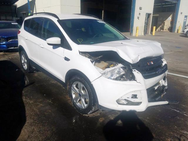 Salvage cars for sale from Copart Anthony, TX: 2016 Ford Escape SE