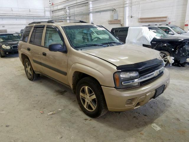 1GNDT13S752347517-2005-chevrolet-trailblaze