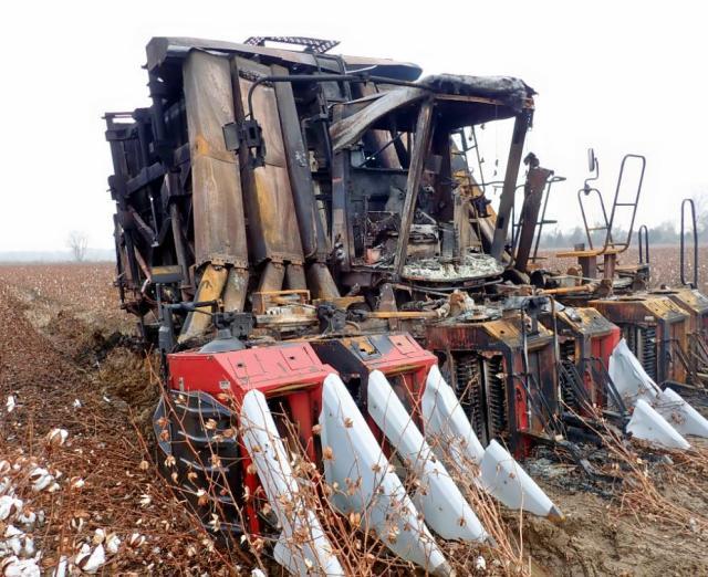 61716489-2011-case-cotton-635