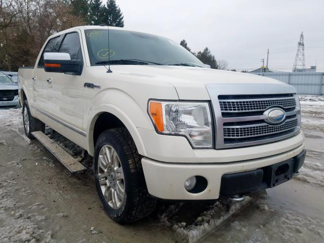 Salvage 2009 FORD F150 - Small image. Lot 29864130