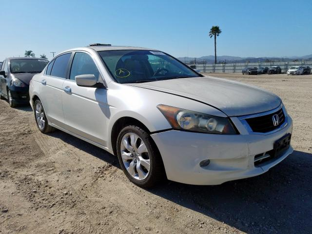 Honda Accord EXL salvage cars for sale: 2010 Honda Accord EXL