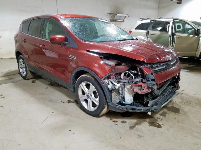 2014 Ford Escape SE for sale in Portland, MI