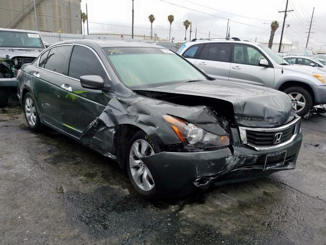 Honda Accord EXL salvage cars for sale: 2009 Honda Accord EXL