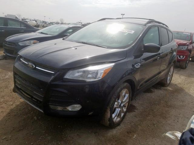 2013 Ford ESCAPE | Vin: 1FMCU9G95DUC43565