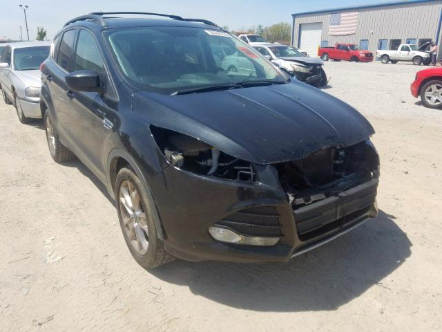 Vehiculos salvage en venta de Copart Louisville, KY: 2014 Ford Escape SE