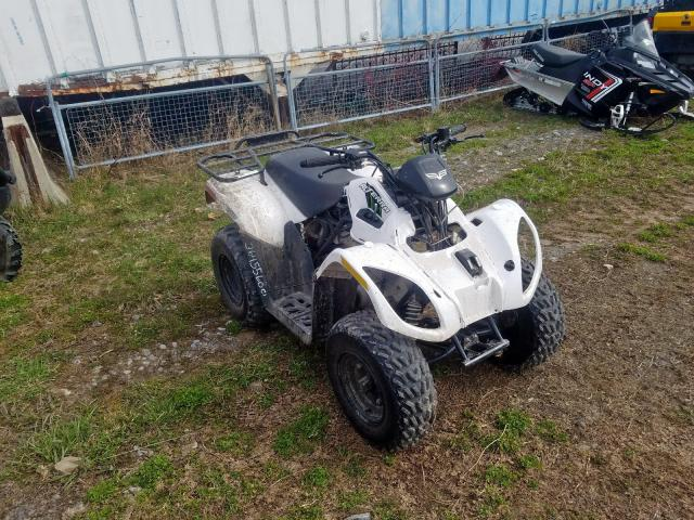 ATV Other salvage cars for sale: 2018 ATV Other