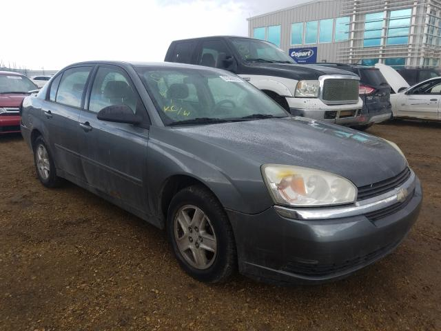 Chevrolet salvage cars for sale: 2004 Chevrolet Malibu LS