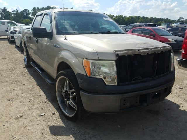 Ford F-150 salvage cars for sale: 2009 Ford F-150