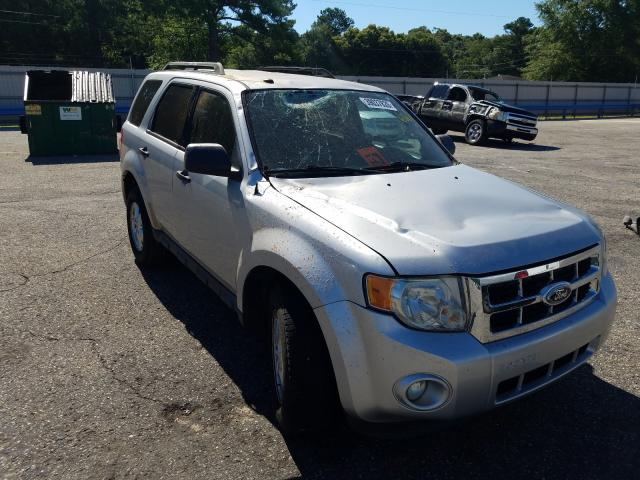 Ford Escape XLT salvage cars for sale: 2010 Ford Escape XLT