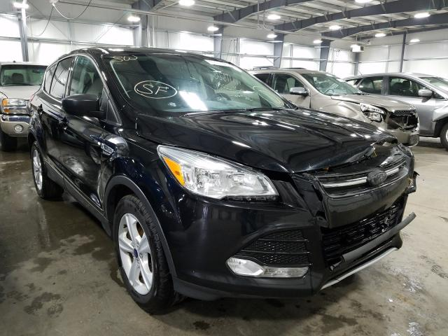 2016 Ford Escape SE for sale in Ham Lake, MN