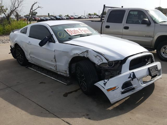 1ZVBP8AM6E5228791-2014-ford-mustang