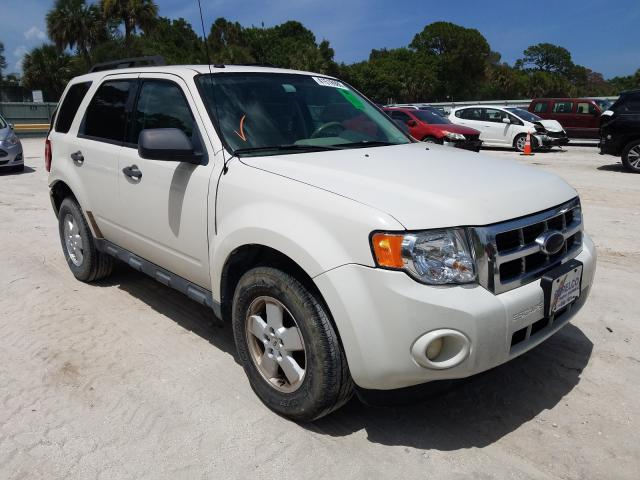 Salvage cars for sale from Copart Fort Pierce, FL: 2010 Ford Escape XLT