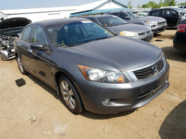 Salvage cars for sale from Copart Pekin, IL: 2009 Honda Accord EXL