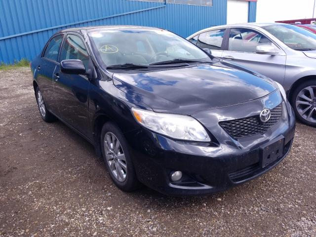 Salvage cars for sale from Copart Rocky View County, AB: 2009 Toyota Corolla BA