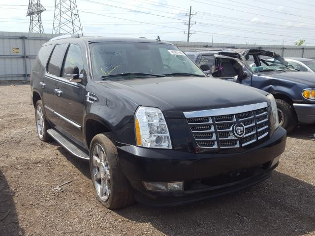 Cadillac salvage cars for sale: 2009 Cadillac Escalade L