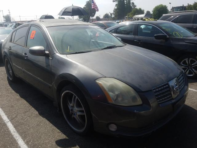 Nissan Maxima salvage cars for sale: 2005 Nissan Maxima